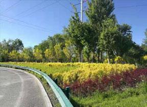 新疆園林綠化磚
